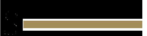 BirgittaSmycken logga